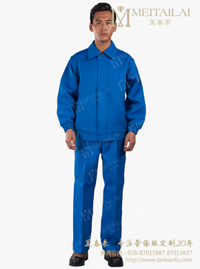 <b>蓝色长袖防护服</b>